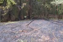 Flächenbrand in Richtung Nordfeld