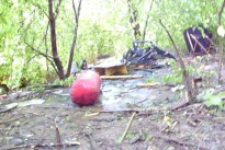 Brennt Kinderrefugium in Nähe Schacht III