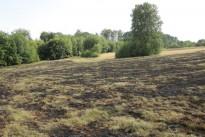 Flächenbrand in Nähe der Dunzweilerstraße