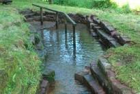 Wassertretanlage gereinigt